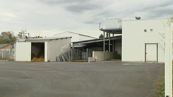 Abattoir de Mauléon : Des pratiques inacceptables!