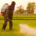 Pesticides interdits en Europe mais exportés dans les pays tiers : un véritable non sens !