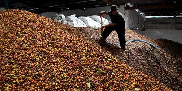 «La prochaine PAC sera agricole et alimentaire ou ne sera pas»