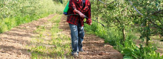 Pesticides : l'Europe complice des exportations de produits toxiques