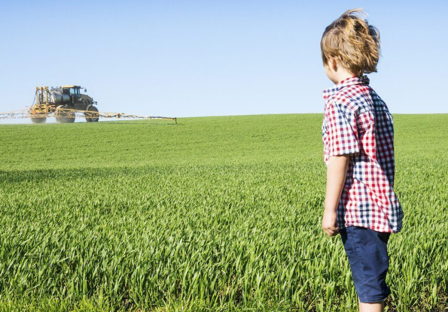 Environnement : d'une décision française vers une jurisprudence européenne